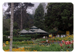 Ooty Car Rental For Bryant Park, Kodaikanal